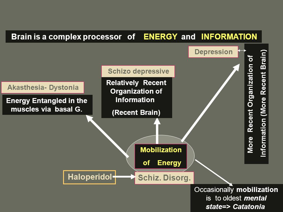Brain is a complex processor of ENERGY and INFORMATION Haloperidol