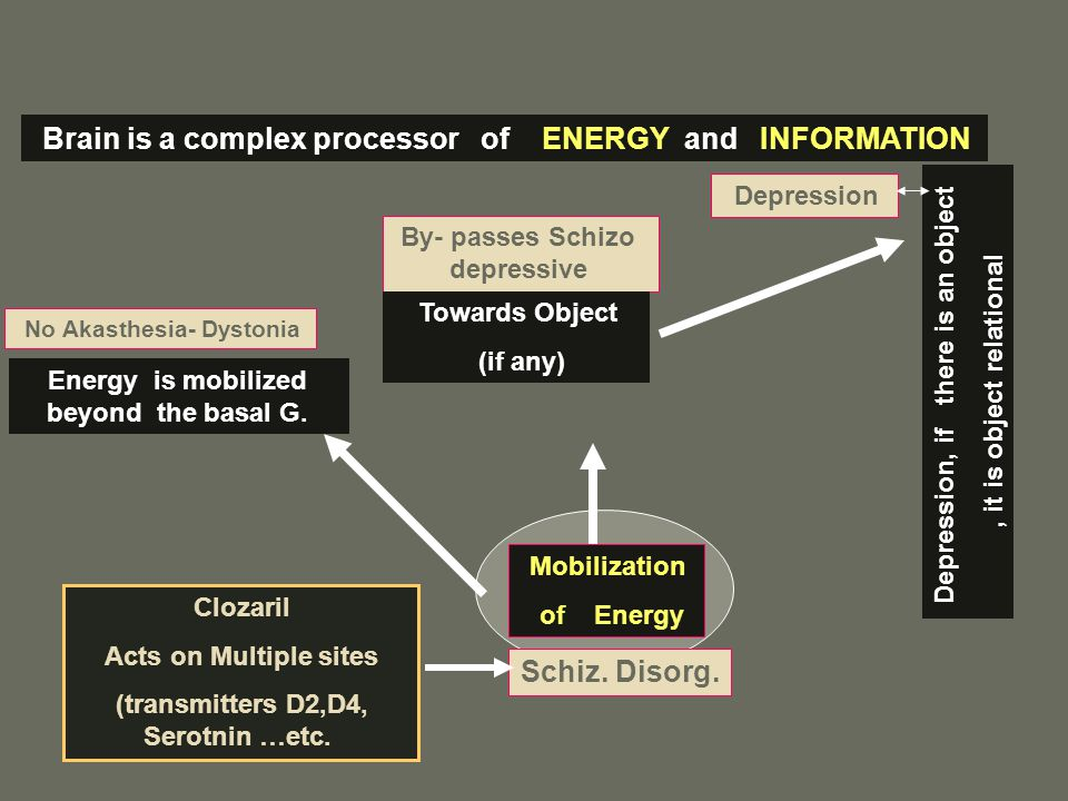 Brain is a complex processor of ENERGY and INFORMATION