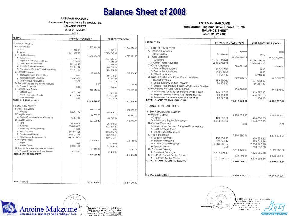 Balance Sheet of 2008
