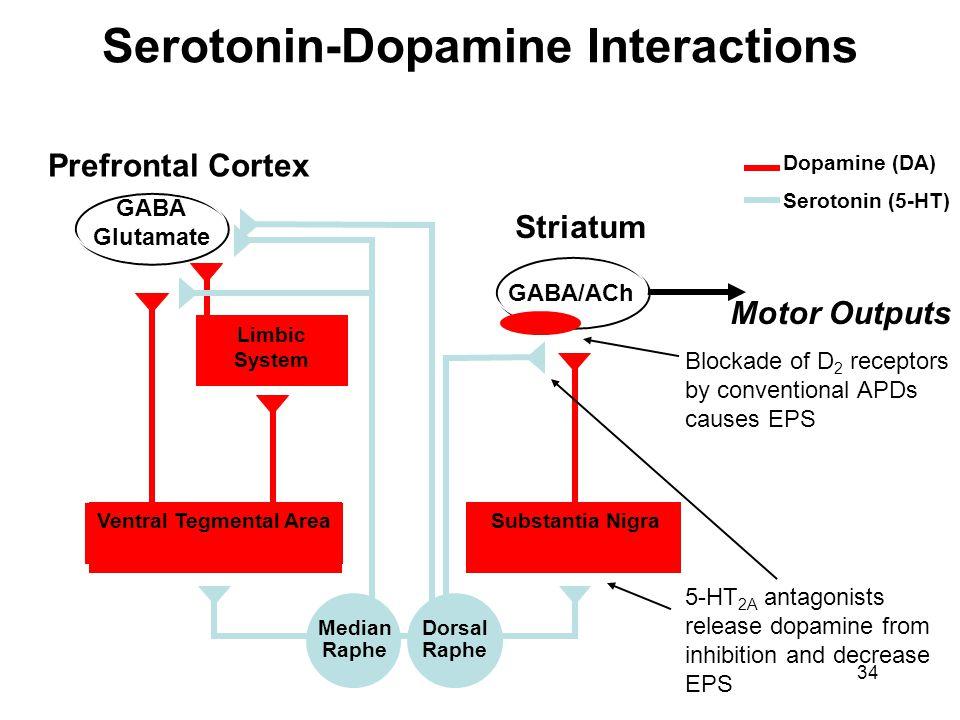 Serotonin-Dopamine Interactions Ventral Tegmental Area