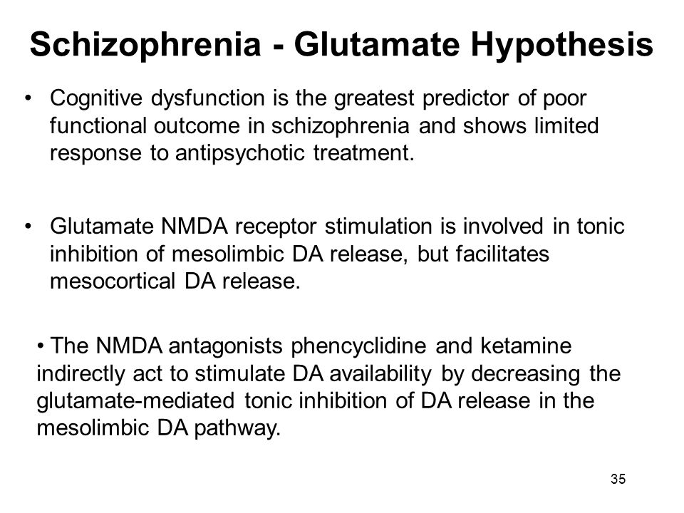 Schizophrenia - Glutamate Hypothesis