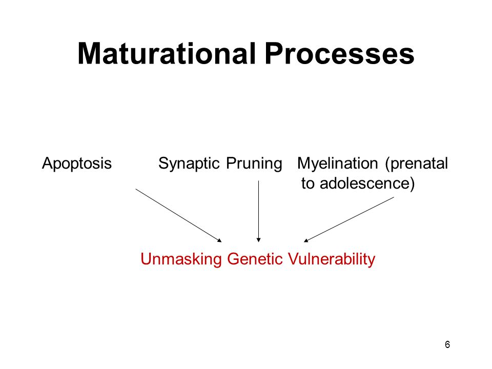 Maturational Processes