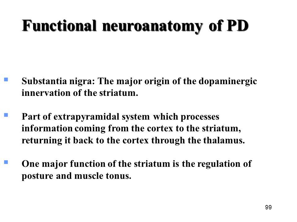 Functional neuroanatomy of PD