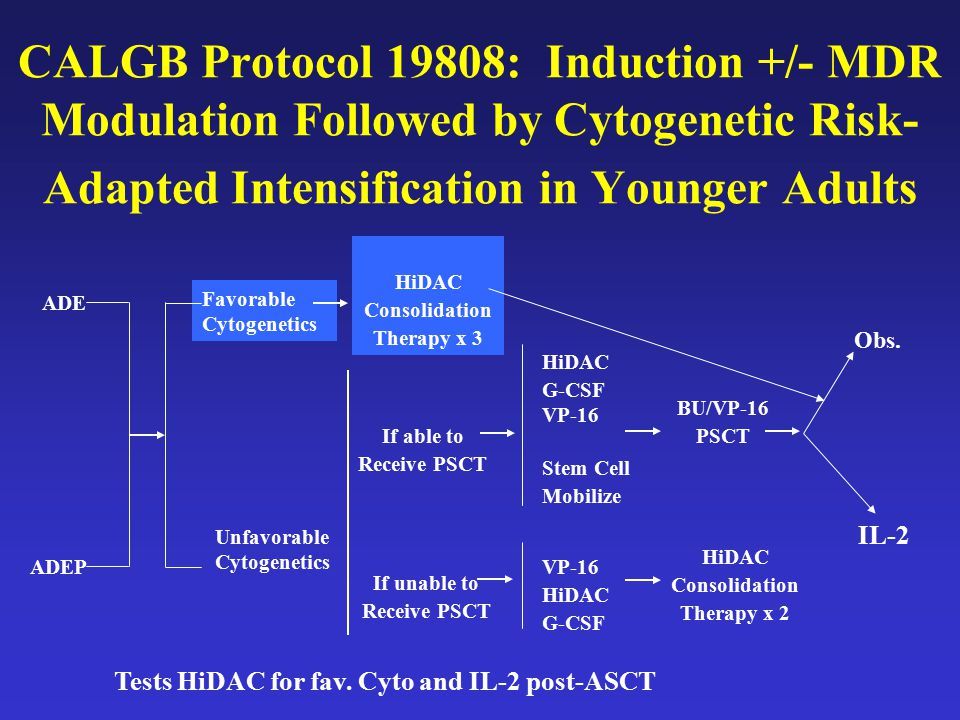 CALGB Protocol 19808: Induction +/- MDR Modulation Followed by Cytogenetic Risk-Adapted Intensification in Younger Adults