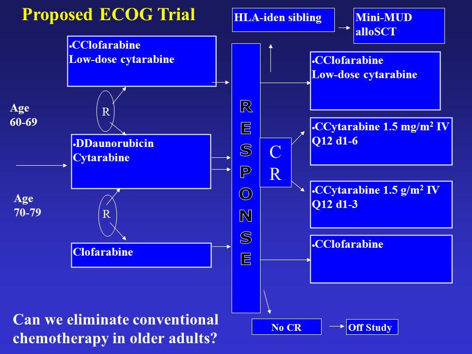 Proposed ECOG Trial HLA-iden sibling. Mini-MUD alloSCT. CClofarabine. Low-dose cytarabine. CClofarabine.