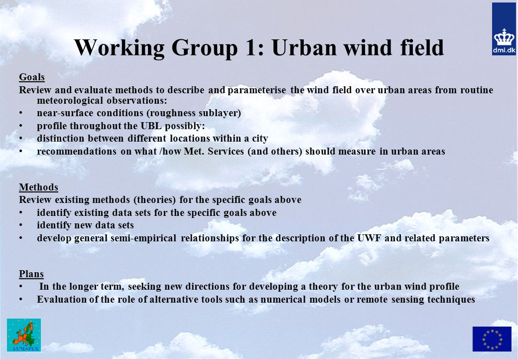 Working Group 1: Urban wind field
