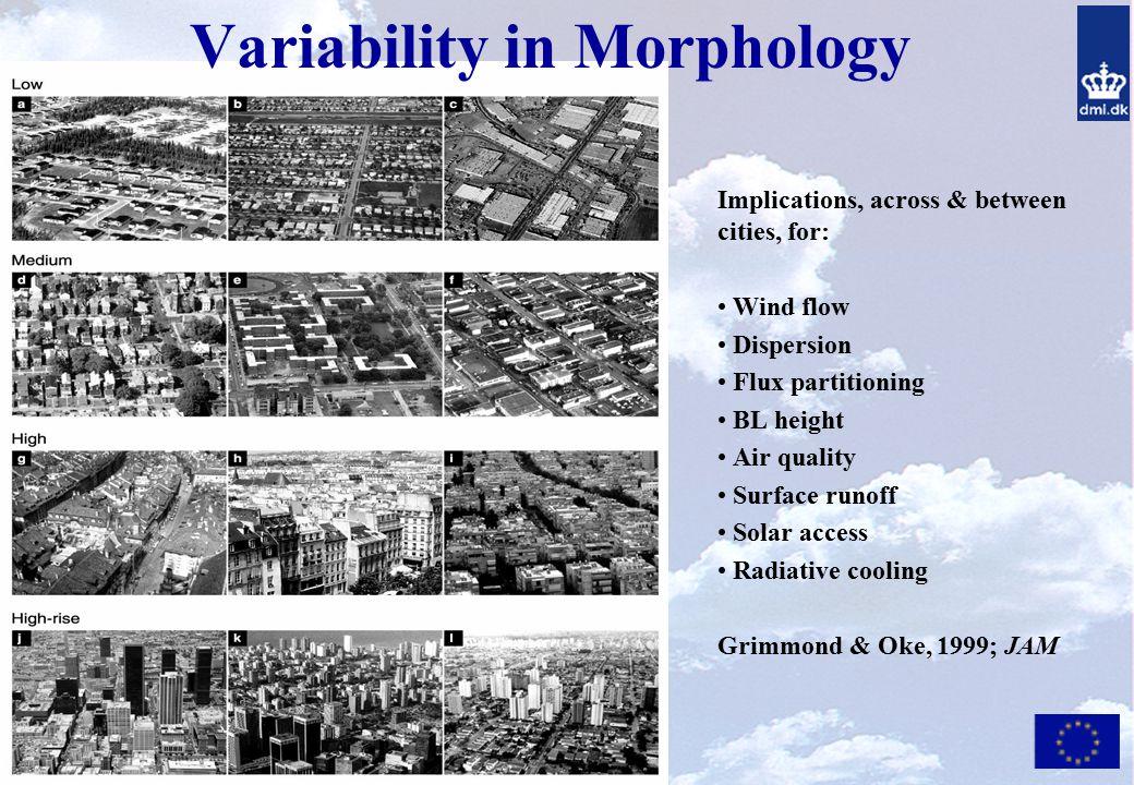 Variability in Morphology