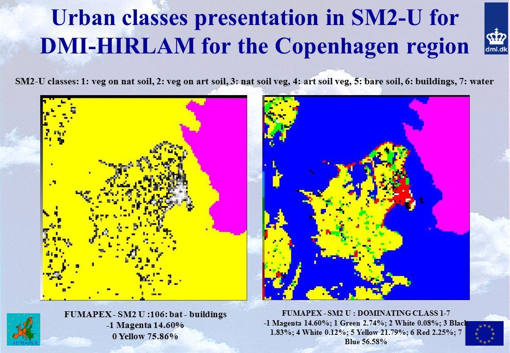 Urban classes presentation in SM2-U for DMI-HIRLAM for the Copenhagen region