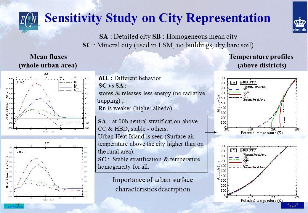 Sensitivity Study on City Representation
