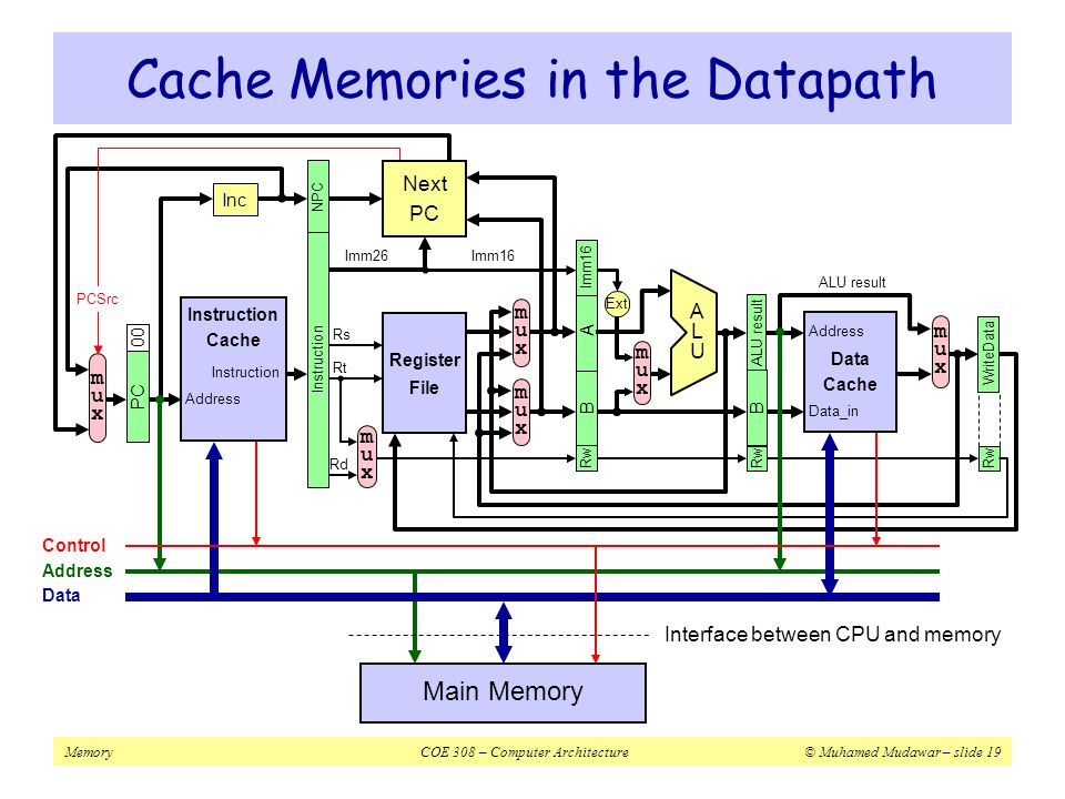 Cache Memories in the Datapath