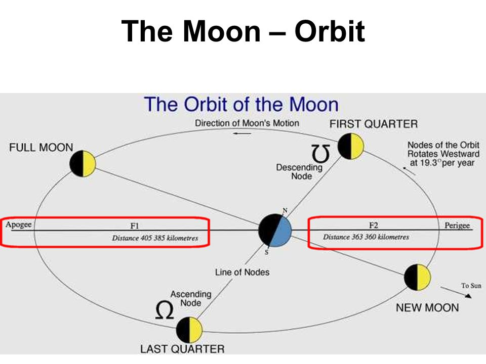 The Moon – Orbit Note the difference in distance between perigee and apogee