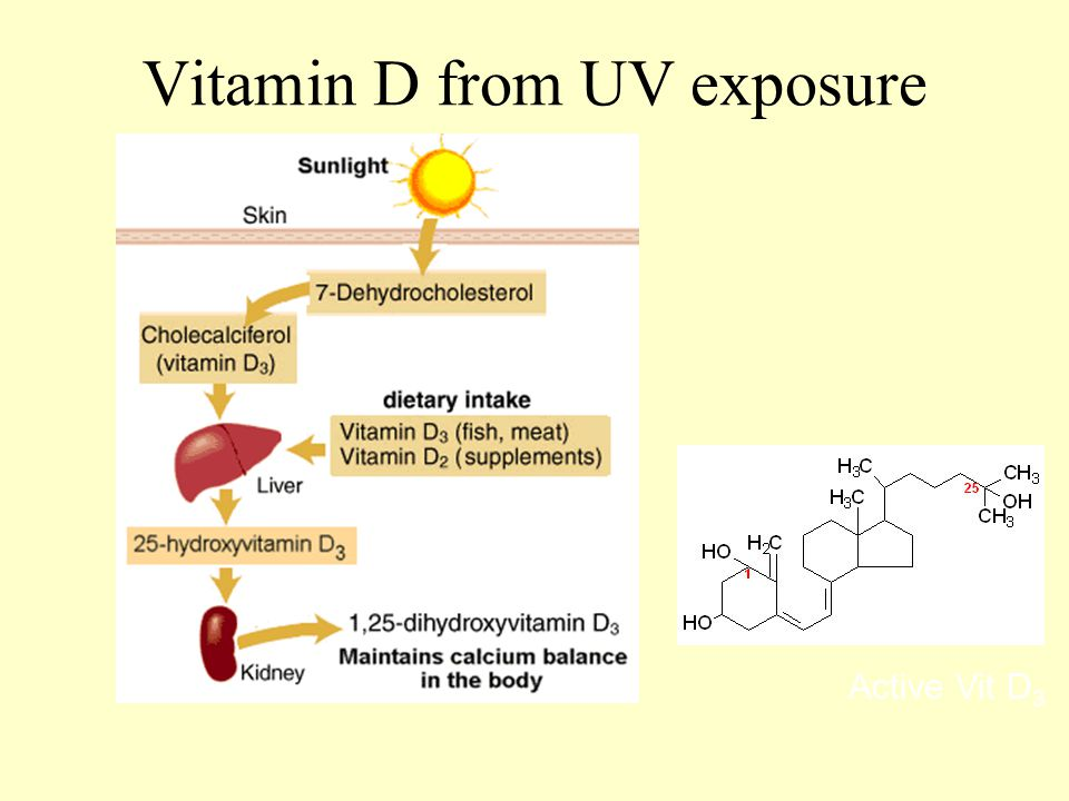 Vitamin D from UV exposure