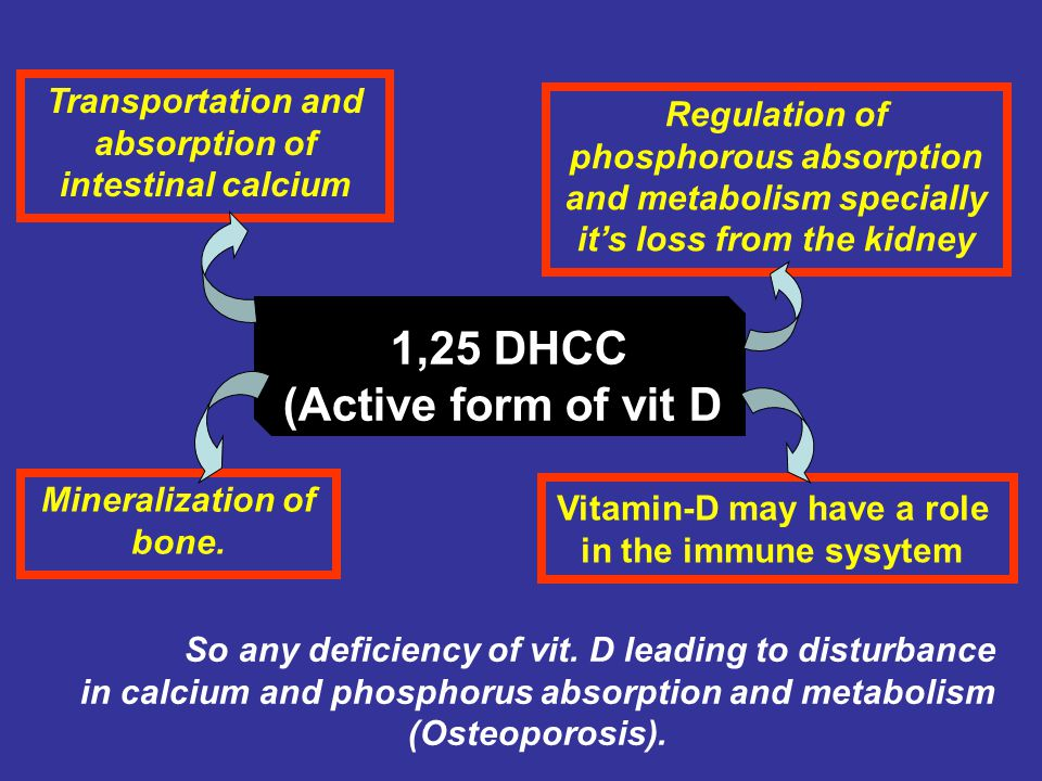 1,25 DHCC (Active form of vit D