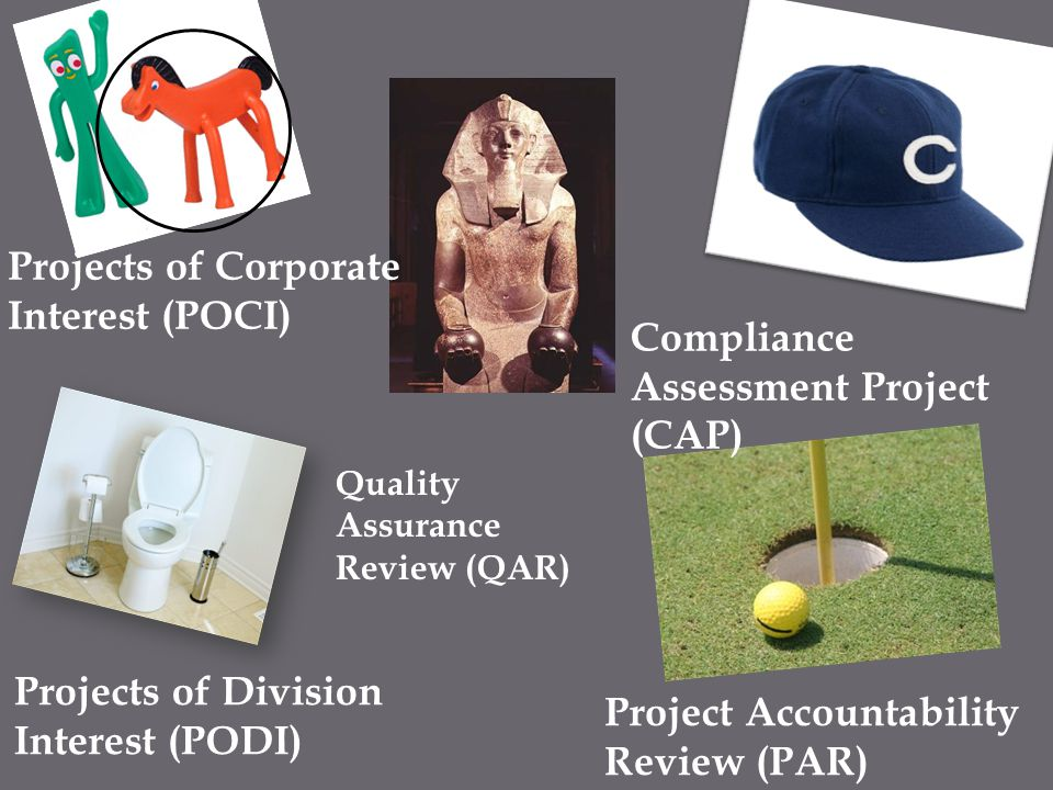 Projects of Corporate Interest (POCI)