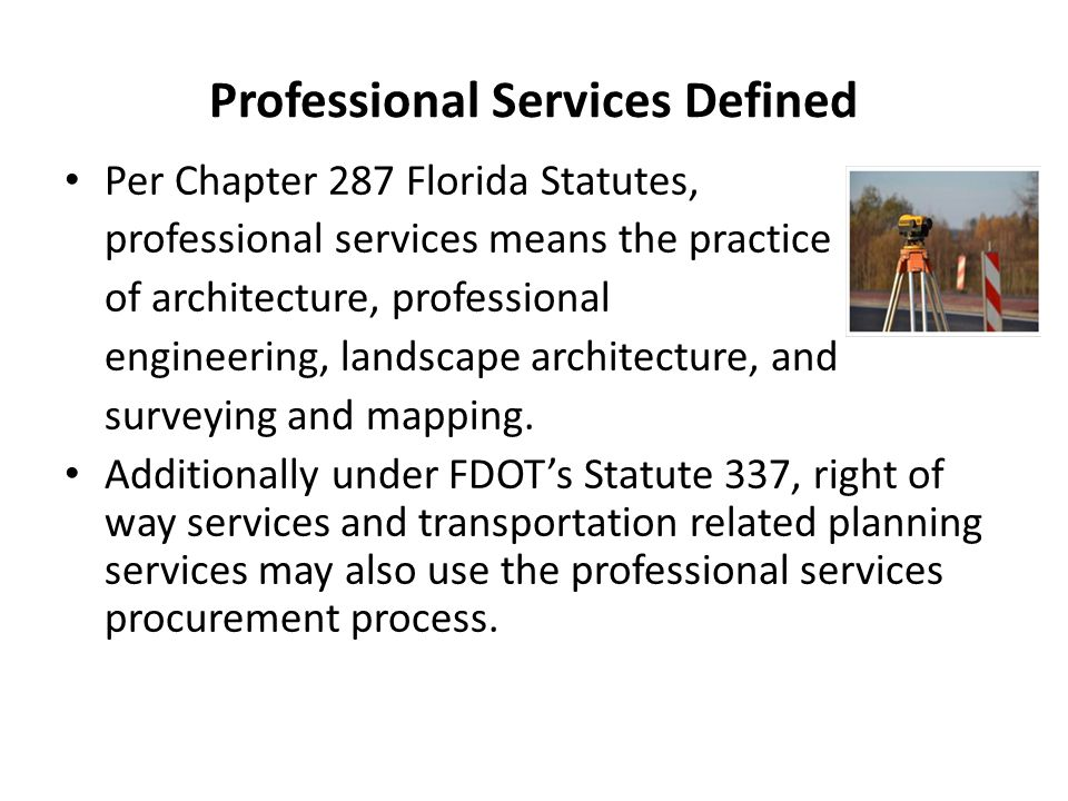 Professional Services Defined