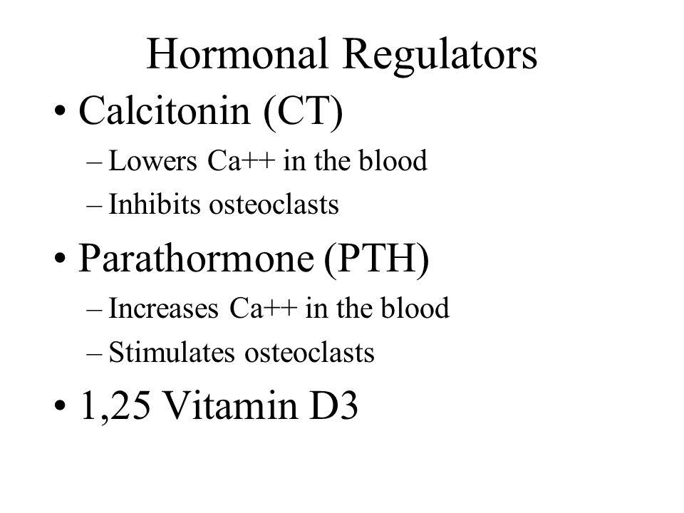 Hormonal Regulators Calcitonin (CT) Parathormone (PTH) 1,25 Vitamin D3