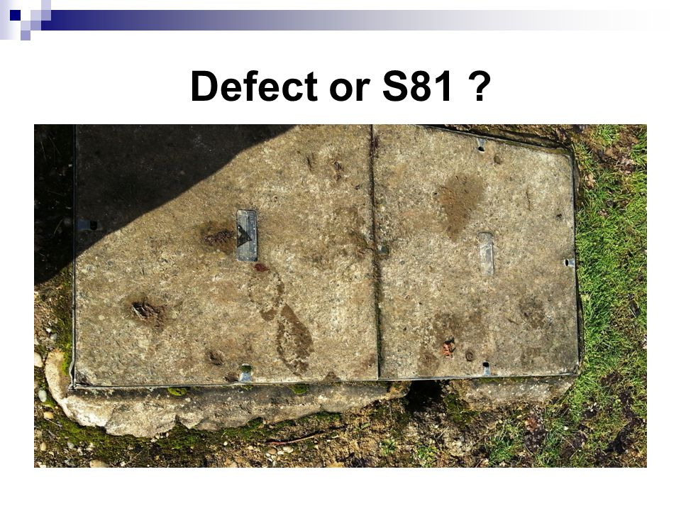 Defect or S81