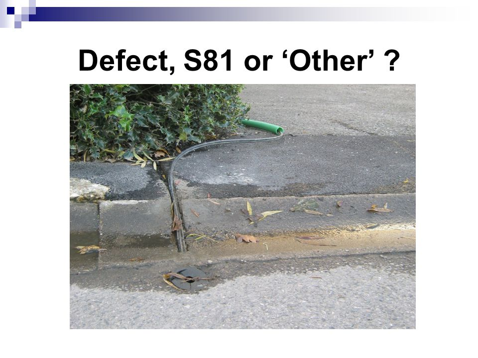 Defect, S81 or 'Other'