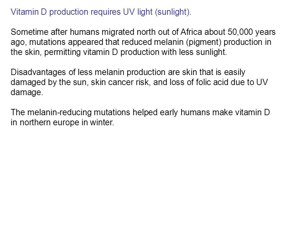 Vitamin D production requires UV light (sunlight).