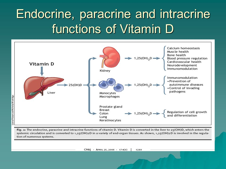 Endocrine, paracrine and intracrine functions of Vitamin D