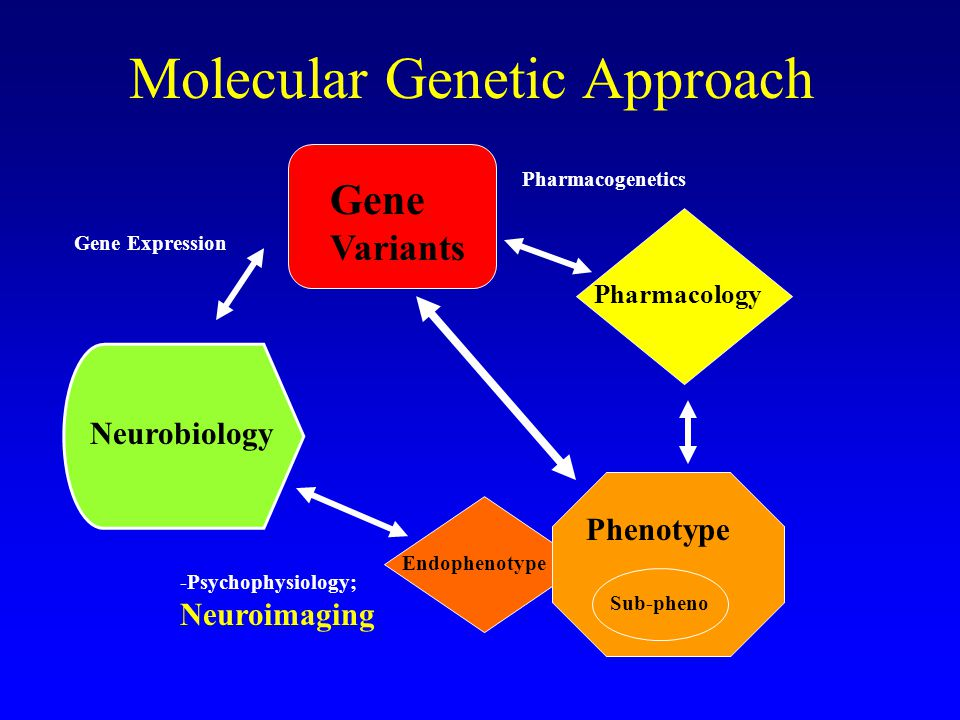 chemical genetics where and pharmacology meet