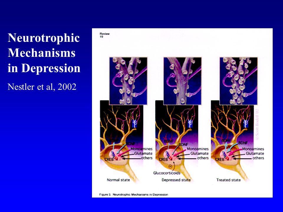Neurotrophic Mechanisms in Depression