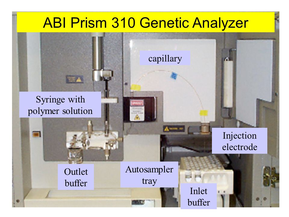 ABI Prism 310 Genetic Analyzer