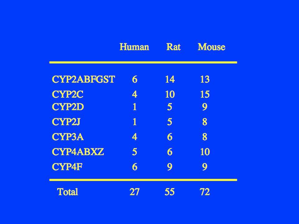 Human Rat Mouse CYP2ABFGST. 6 14 13. CYP2C. 4 10 15.