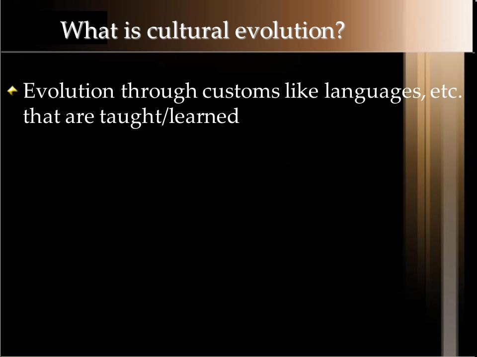 What is cultural evolution