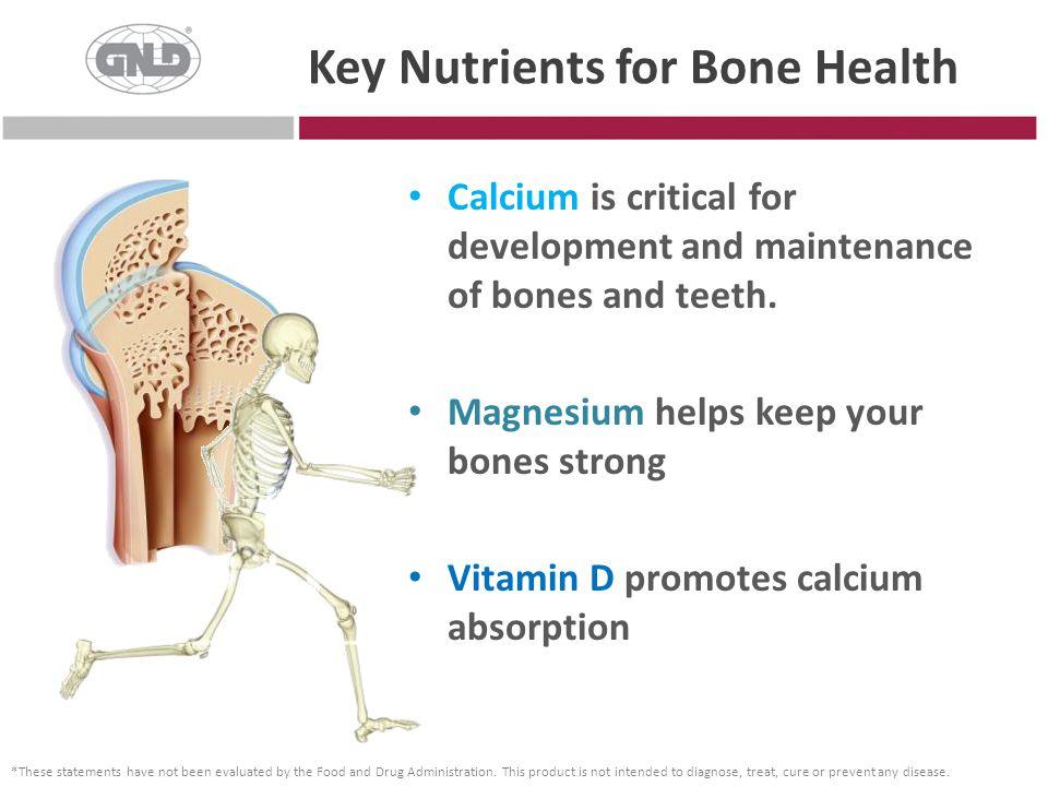 Key Nutrients for Bone Health