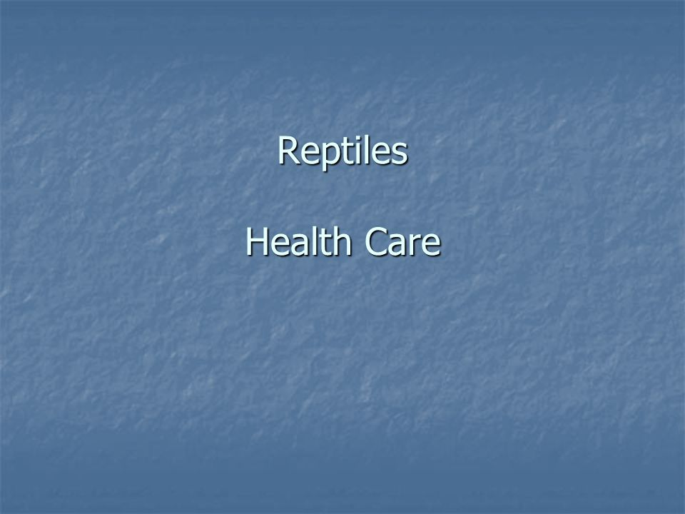 Reptiles Health Care
