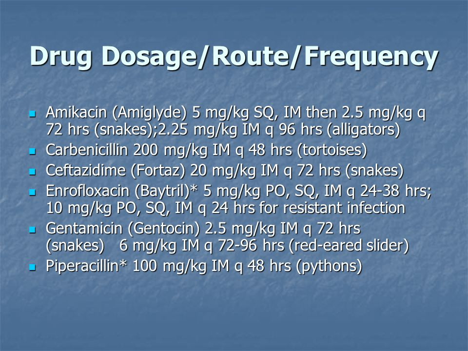 Drug Dosage/Route/Frequency