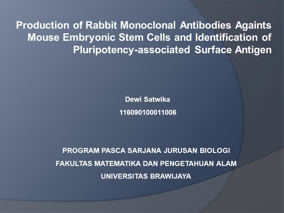 Production of Rabbit Monoclonal Antibodies Againts Mouse Embryonic Stem Cells and Identification of Pluripotency-associated Surface Antigen