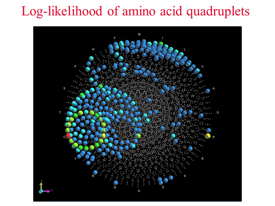 Log-likelihood of amino acid quadruplets