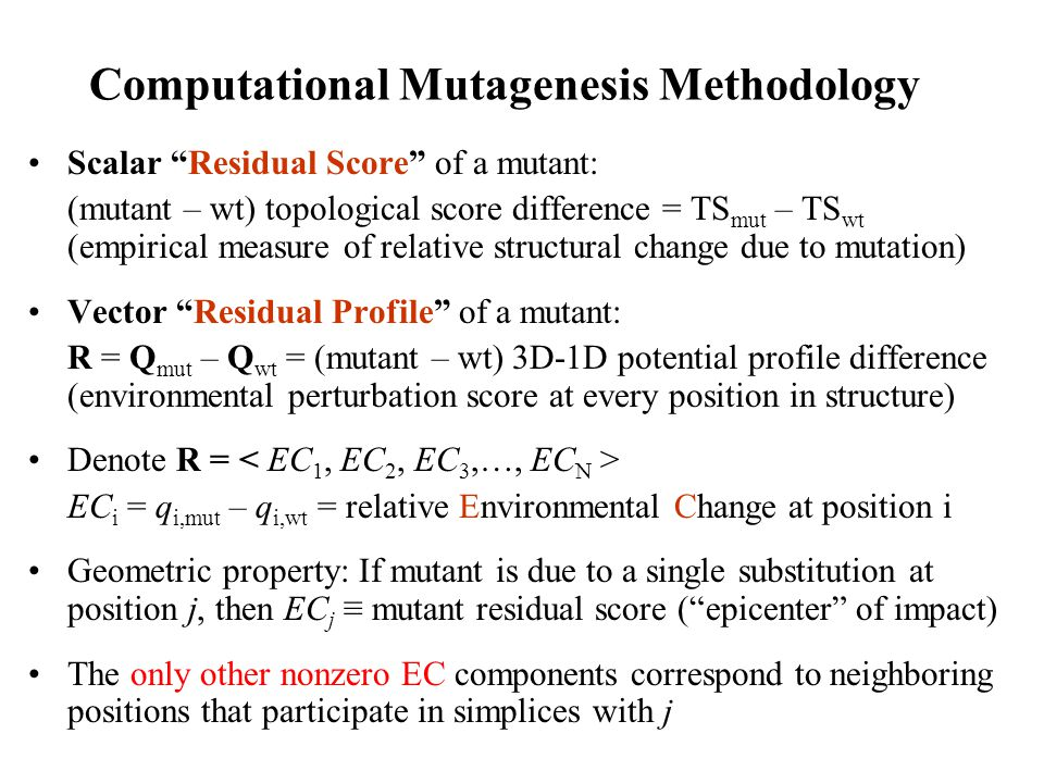 Computational Mutagenesis Methodology