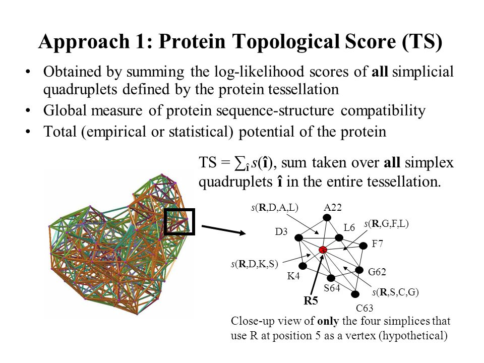 Approach 1: Protein Topological Score (TS)