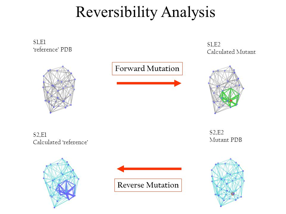 Reversibility Analysis