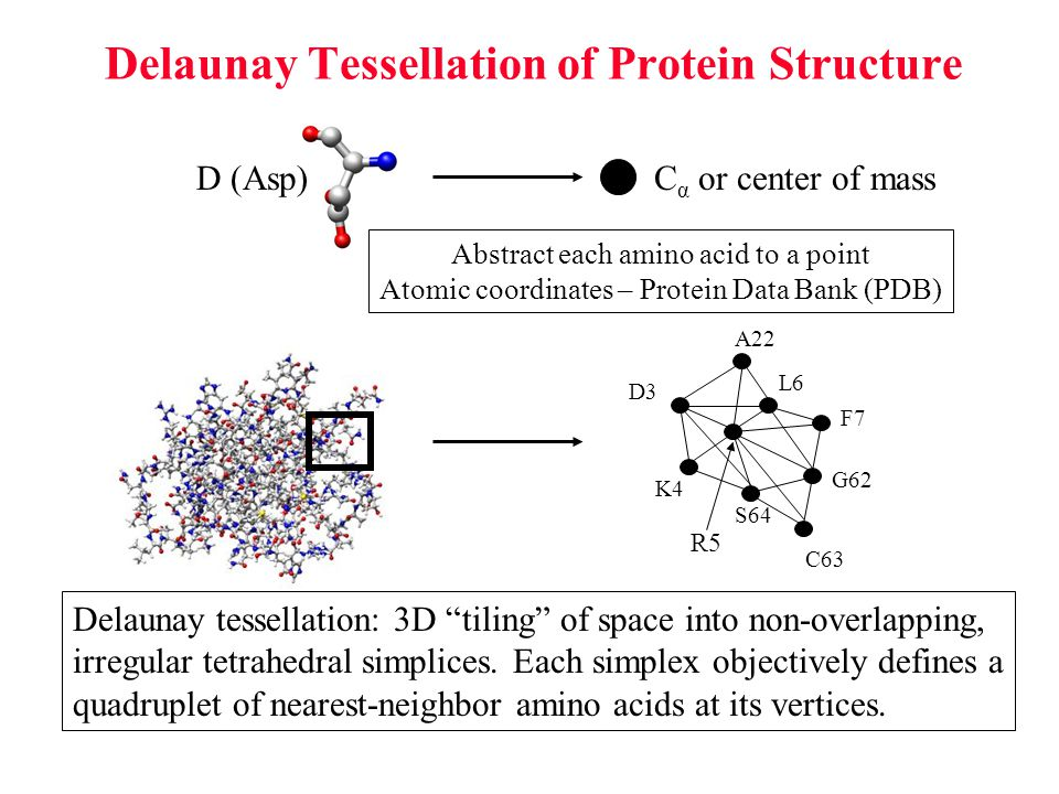 Delaunay Tessellation of Protein Structure