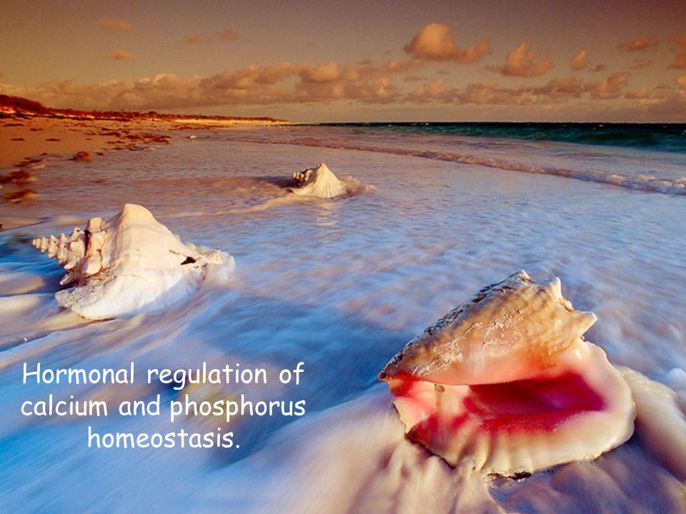 Hormonal regulation of calcium and phosphorus homeostasis.