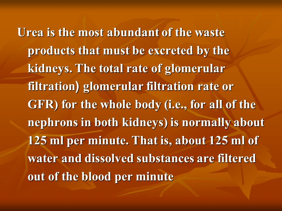 Urea is the most abundant of the waste products that must be excreted by the kidneys.