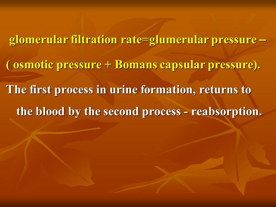 glomerular filtration rate=glumerular pressure –