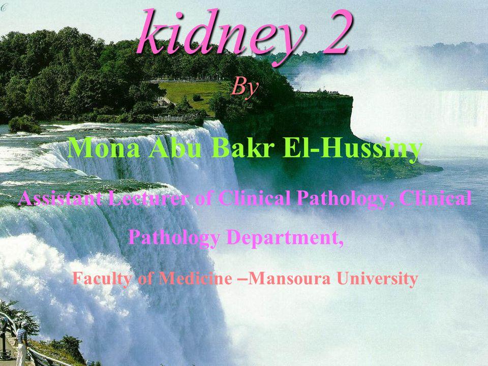 Mona Abu Bakr El-Hussiny Faculty of Medicine –Mansoura University