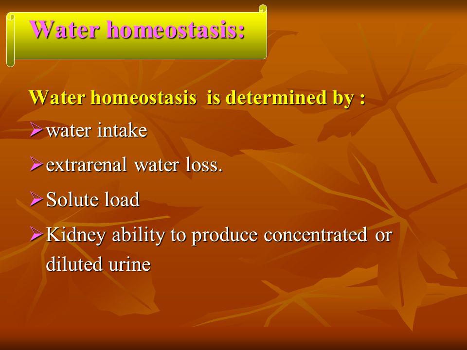 Water homeostasis: Water homeostasis is determined by : water intake