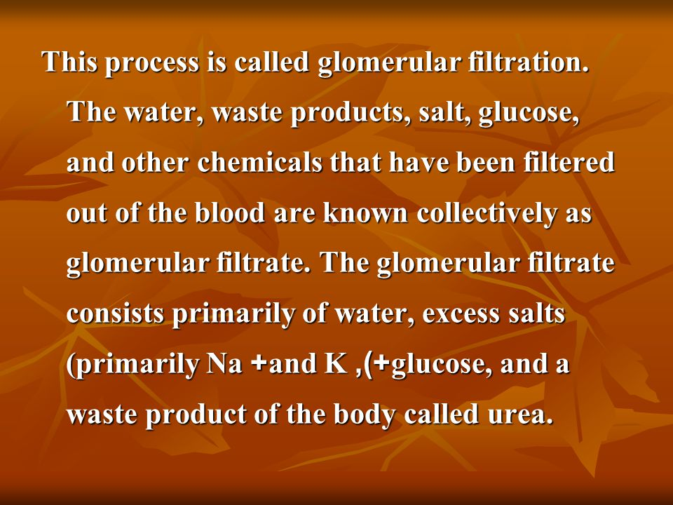 This process is called glomerular filtration