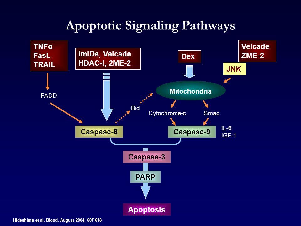 Apoptotic Signaling Pathways