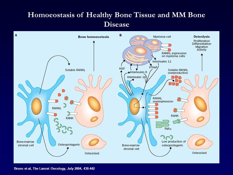 Homoeostasis of Healthy Bone Tissue and MM Bone Disease