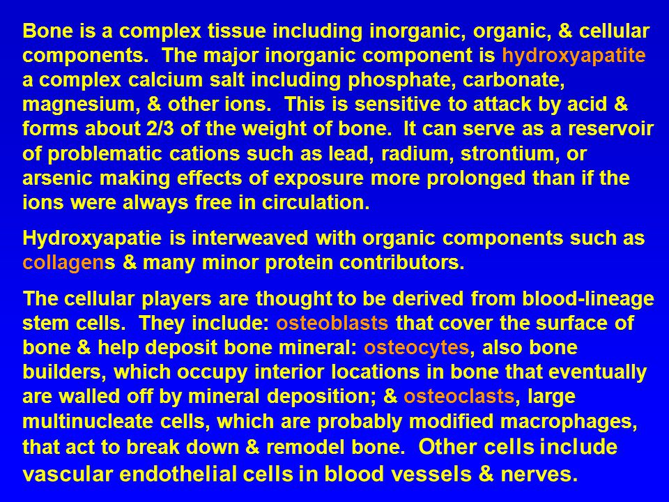 Bone is a complex tissue including inorganic, organic, & cellular components. The major inorganic component is hydroxyapatite a complex calcium salt including phosphate, carbonate, magnesium, & other ions. This is sensitive to attack by acid & forms about 2/3 of the weight of bone. It can serve as a reservoir of problematic cations such as lead, radium, strontium, or arsenic making effects of exposure more prolonged than if the ions were always free in circulation.