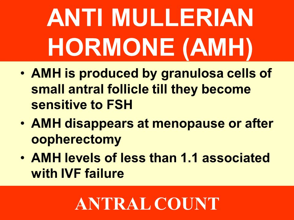 ANTI MULLERIAN HORMONE (AMH)