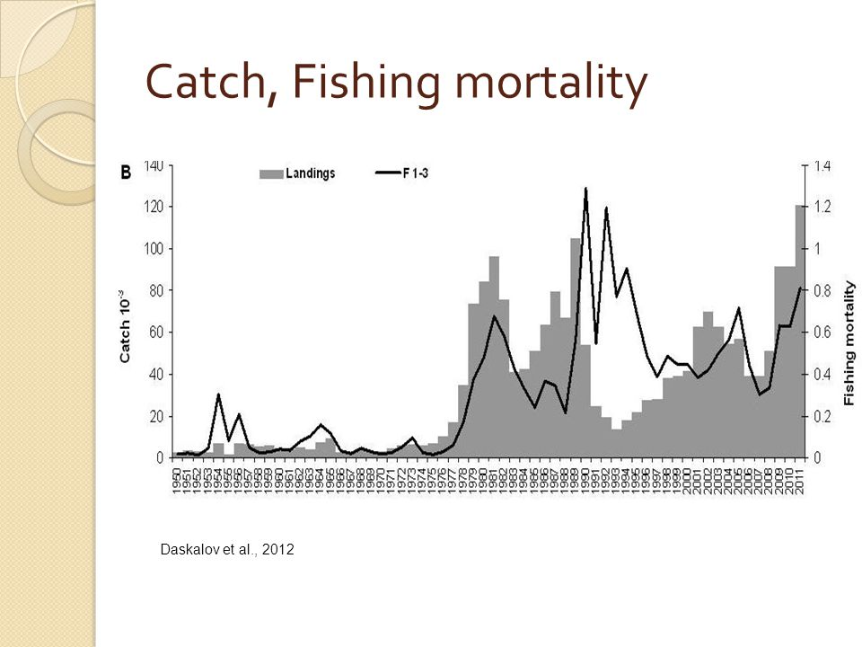 Catch, Fishing mortality