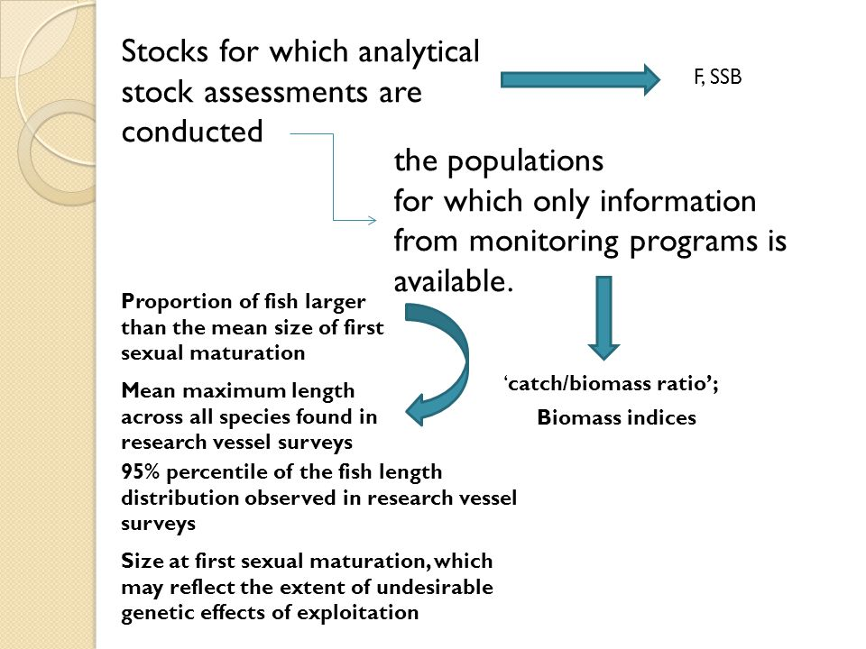 Stocks for which analytical stock assessments are conducted